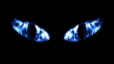 Close-up of Black Cat Eyes