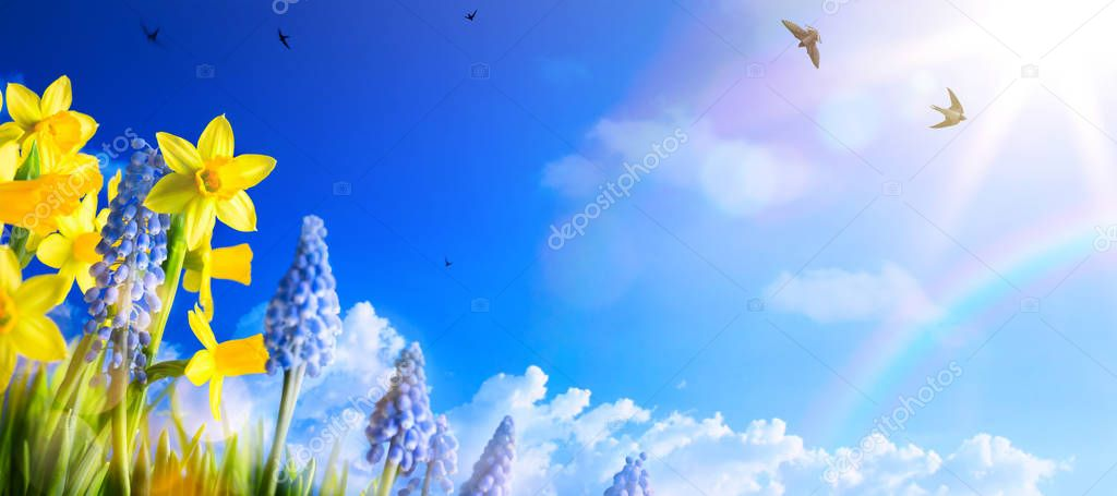 Spring landscape background with fresh spring flowers