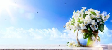 spring flowers a blue sky background;  Spring or summer Nature b