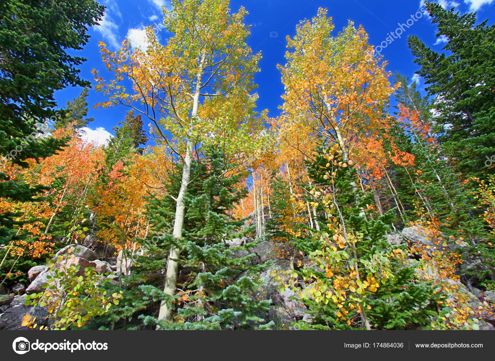 Rocky Mountain National Park Fall Colors — Stock Photo © Wirepec ...