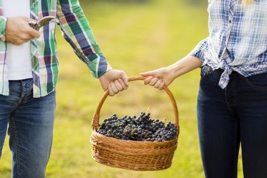 couple with basket full of grapes