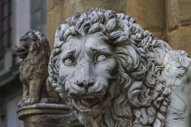Medici lions from Florence