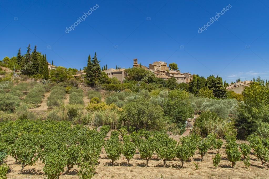 Landscape around  Montouliers