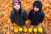 Fotografie Girls in autumn park