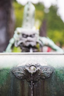 Dragon fountain near Rinnoji Temple