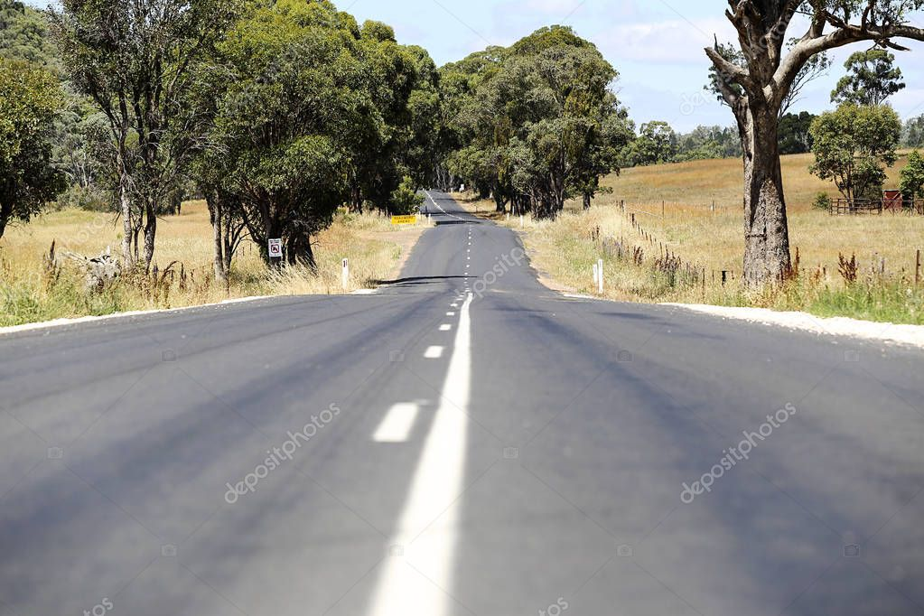 Country road in Mudgee