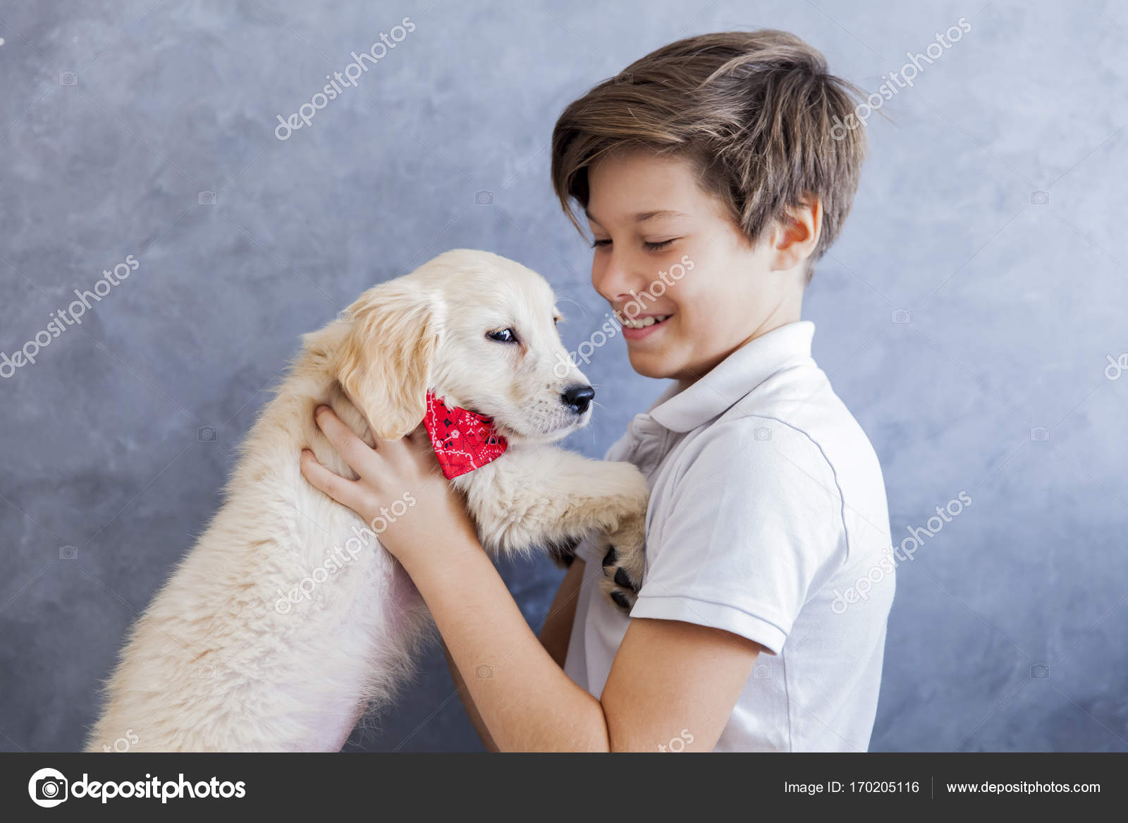 Cute teen boy with baby retriever dog in room– stock image