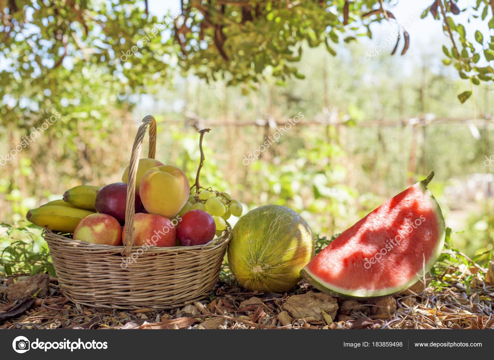 melon, pastèque et osier panier rempli de fruits — photographie