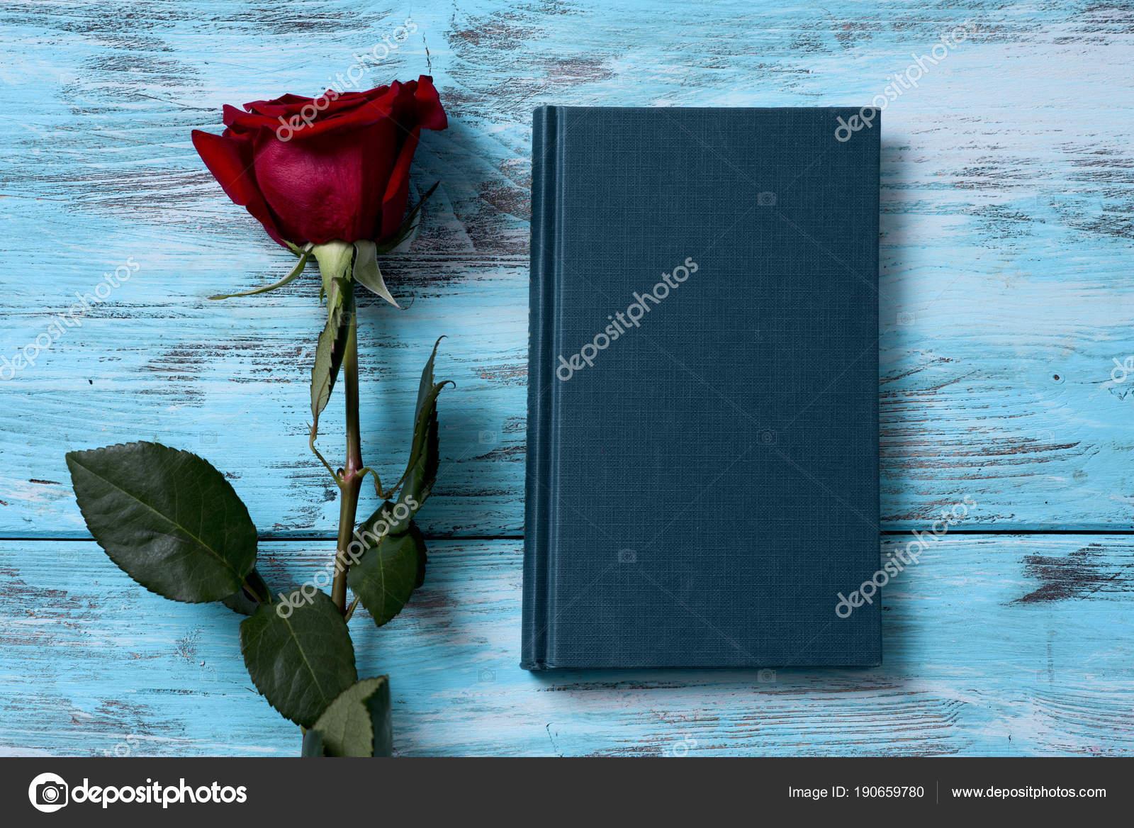Czerwona Róża I Książki Zdjęcie Stockowe Nito103 190659780