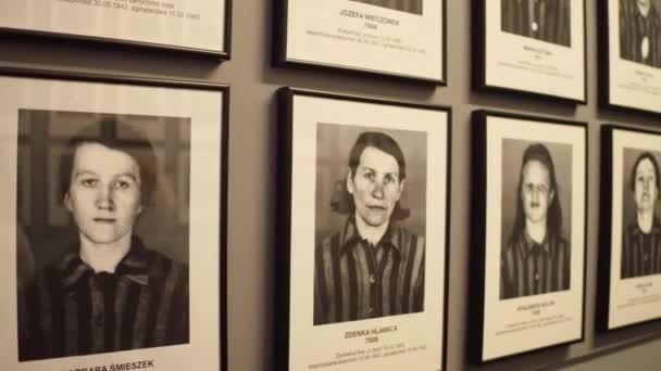 Oswiencim, Polsko - 14 ledna 2017 portréty Auschwitz Birkenau ženské oběti. Německý nacistický koncentrační a vyhlazovací tábor. 4 k steadicam video