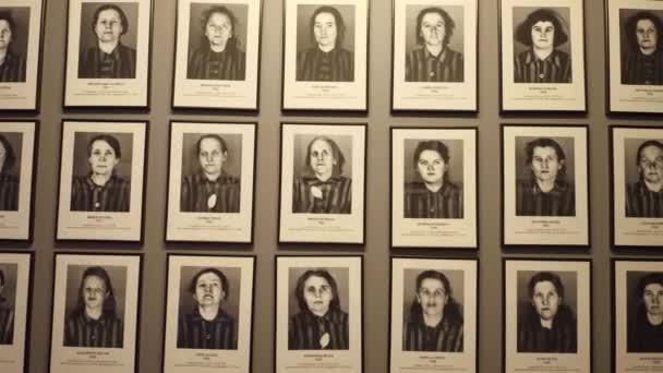 Oswiencim, Polsko - 14 ledna 2017 portréty Auschwitz Birkenau oběti. Německý nacistický koncentrační a vyhlazovací tábor. 4 k steadicam video