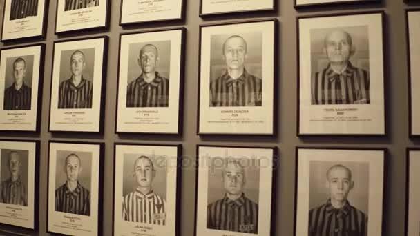 Oswiencim, Polsko - 14 ledna 2017 portréty Auschwitz Birkenau oběti. Německý nacistický koncentrační a vyhlazovací tábor památník. 4 k steadicam video