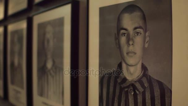 Oswiencim, Polsko - 14 ledna 2017 Steadicam záběr portréty Auschwitz Birkenau mužských obětí. Německý nacistický koncentrační a vyhlazovací tábor. 4k video