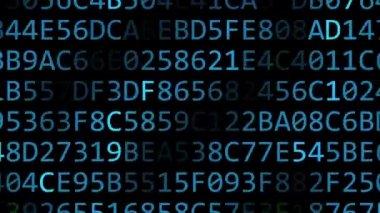 Dell Inc. logo made of flashing hexadecimal symbols on computer screen. Editorial 3D rendering