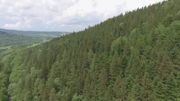 Letecký pohled léto v horách. Polsko. Borovým lesem a mraky nad modrou oblohu. Pohled shora.