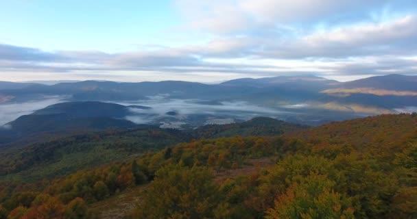 Letecký pohled na podzimní horský Les v mlze