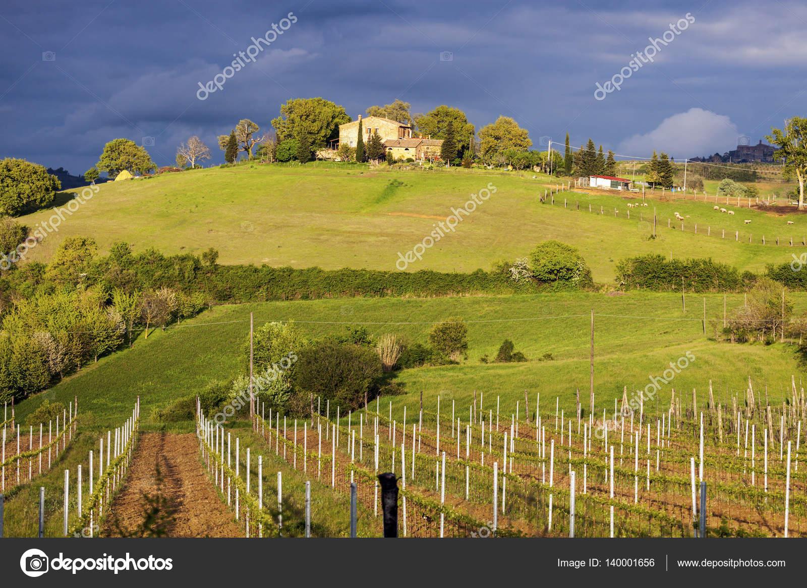 Chwalebne Tuscany krajobraz wiosenny — Zdjęcie stockowe © benkrut #140001656 WE55