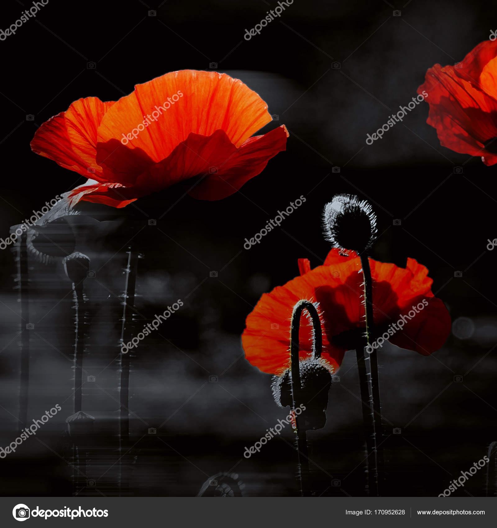 Rood en zwart. Interieur werk — Stockfoto © beholding-3 #170952628