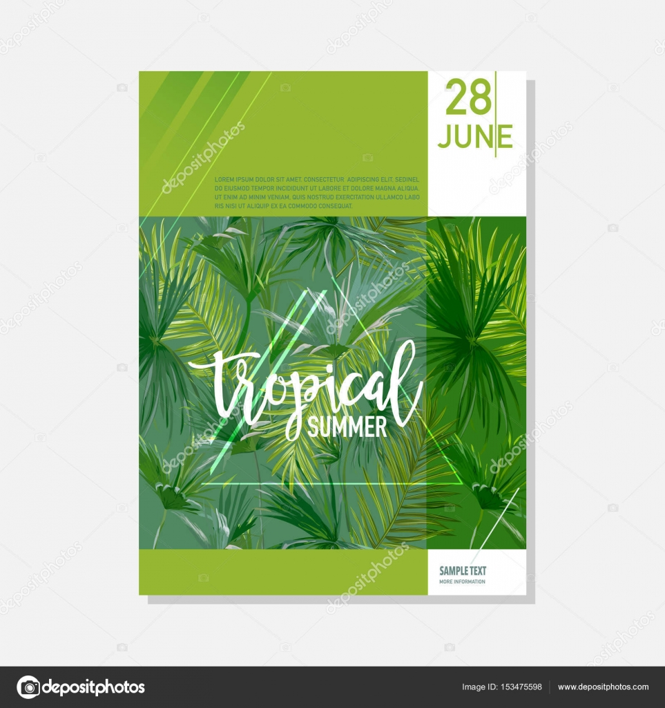 brochure template tropical palms summer graphic background exotic