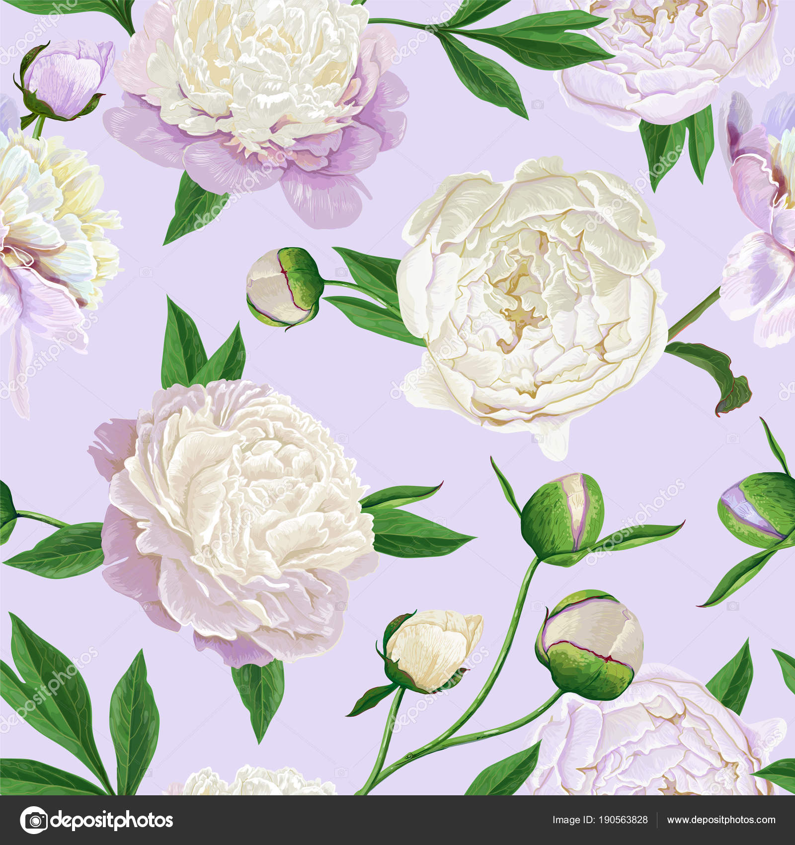 Floral Seamless Pattern with White Peonies Spring Blooming Flowers