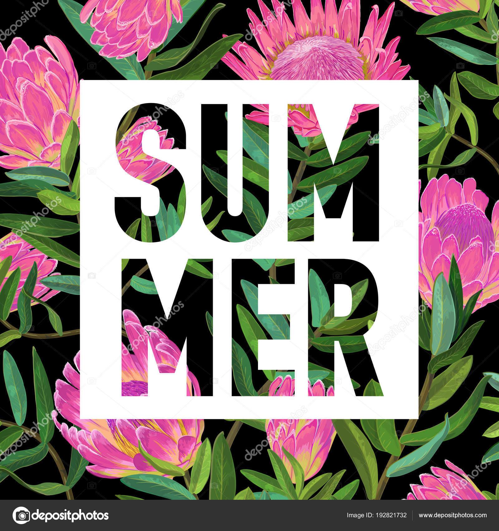 Hello Summer Botanical Tropical Design. Floral Vintage