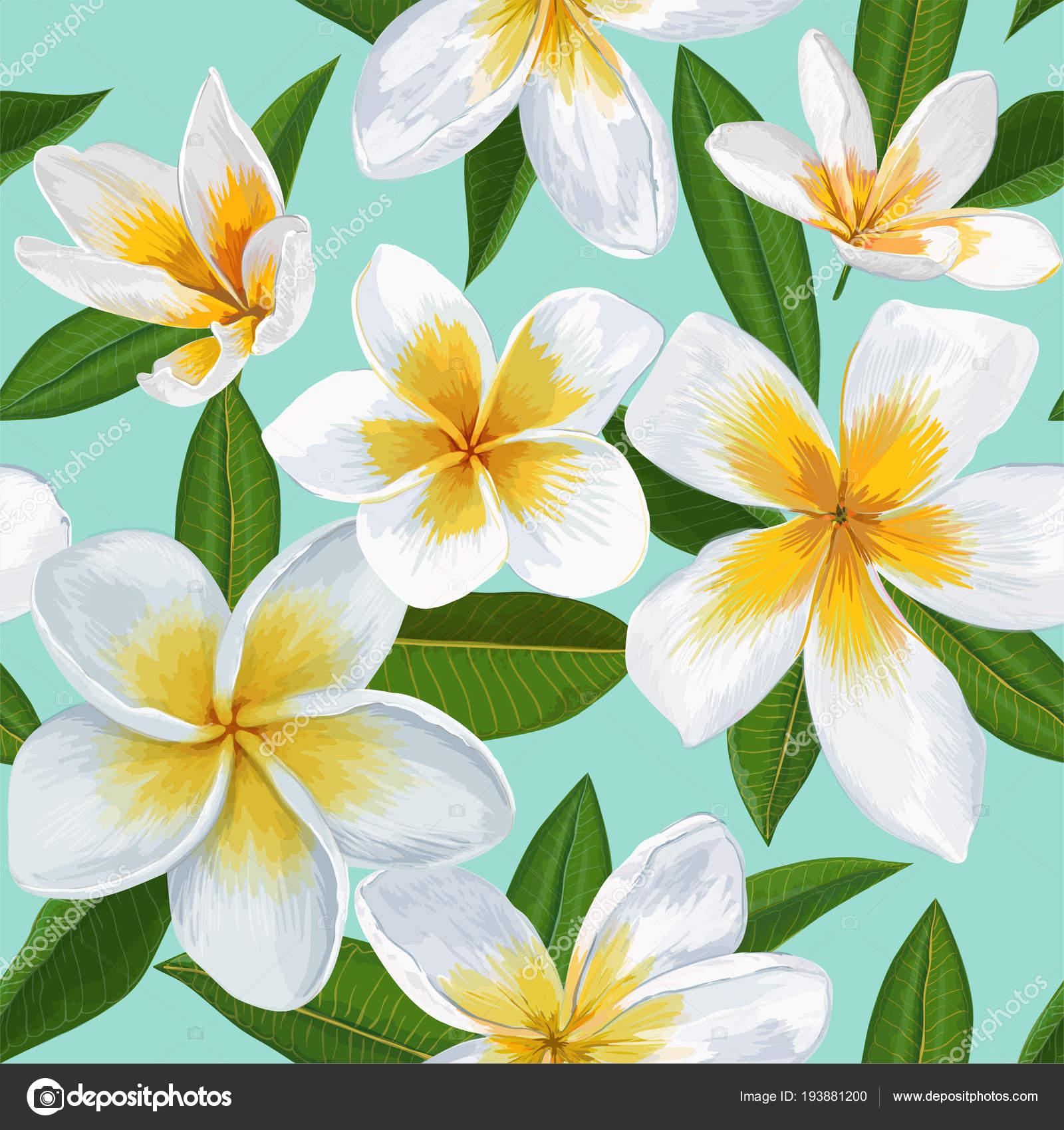 Patrones Flores Para Pintar Tela Tropical De Patrones Sin Fisuras