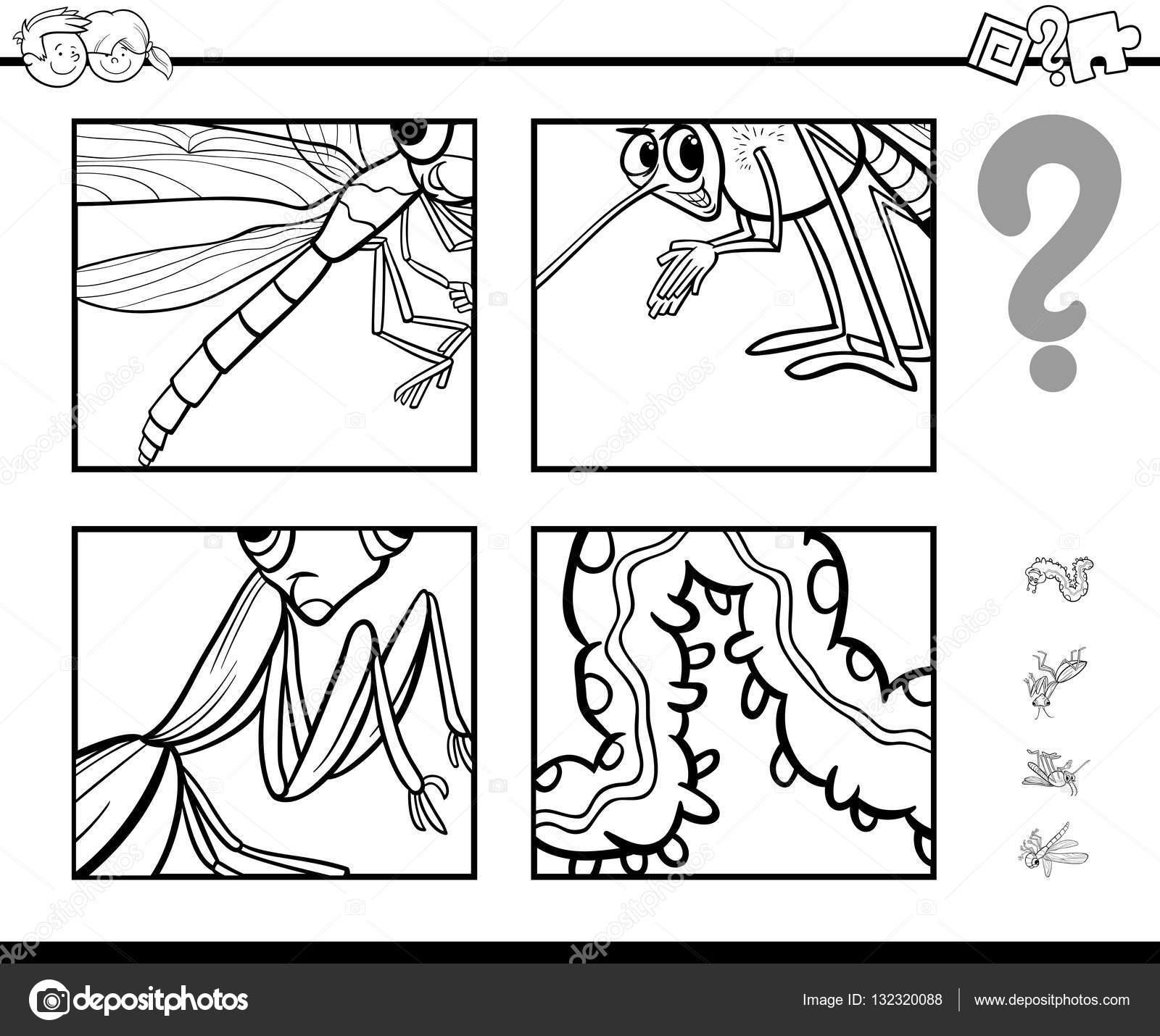 Vermutung Insekten Malvorlagen — Stockvektor © izakowski #132320088