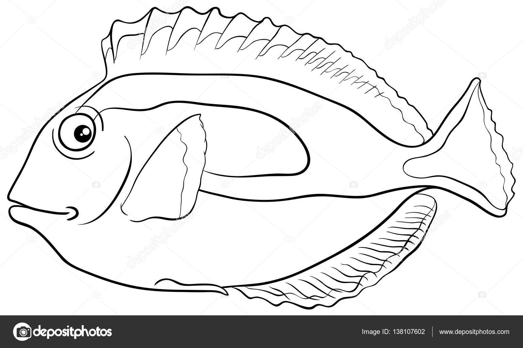 blue tang vis kleurplaat stockvector 169 izakowski 138107602