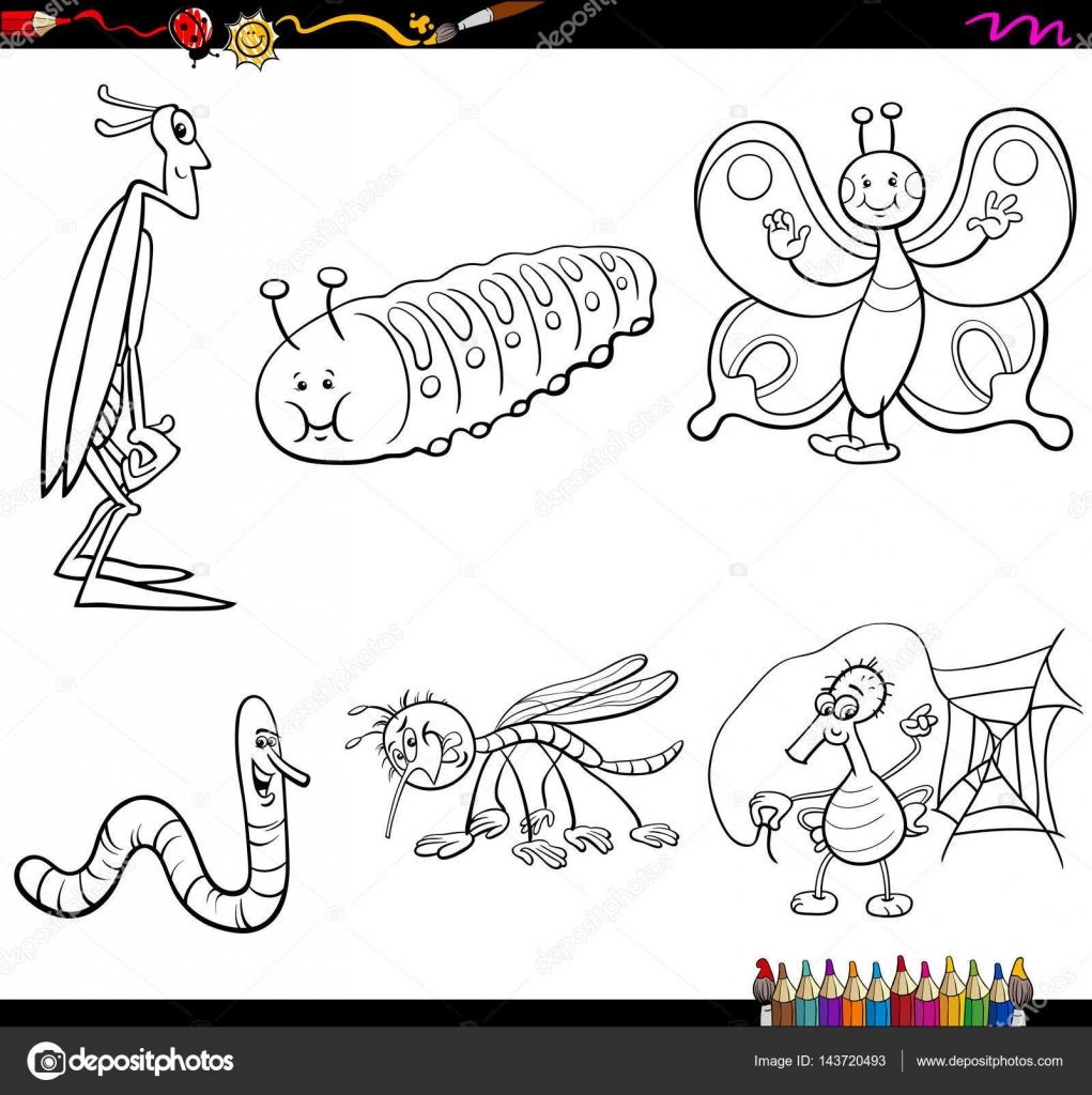 personajes de insectos para colorear página — Vector de stock ...