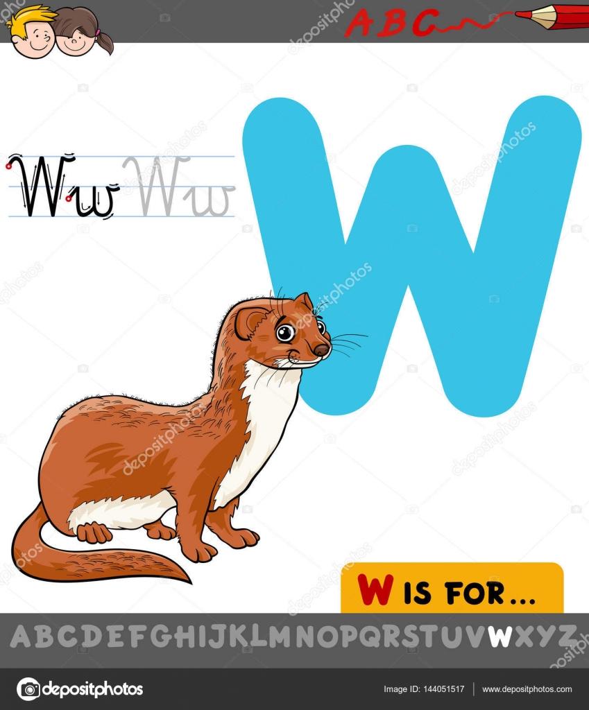 Buchstabe w mit Cartoon Wiesel — Stockvektor © izakowski #144051517