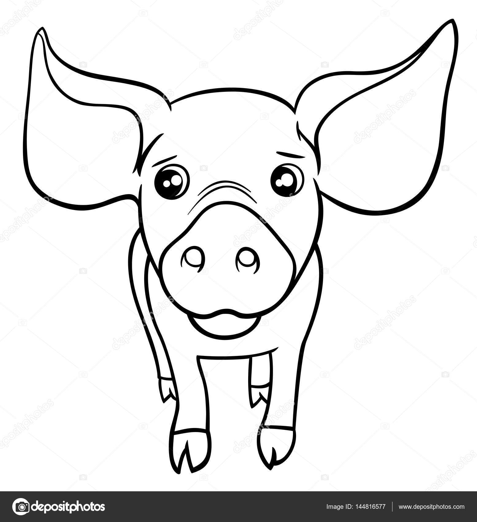 Página para colorear de cerdo o cochinillo — Vector de stock ...