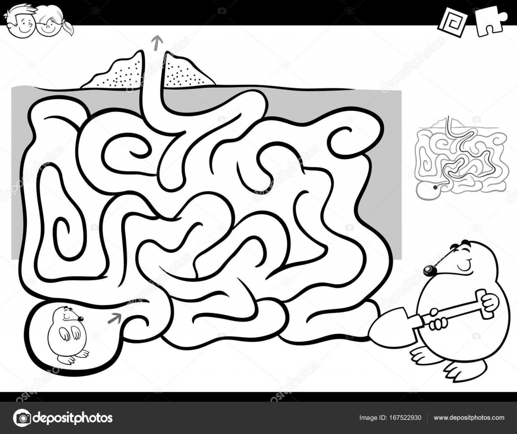 maze activity coloring book wit mole animal stock vector