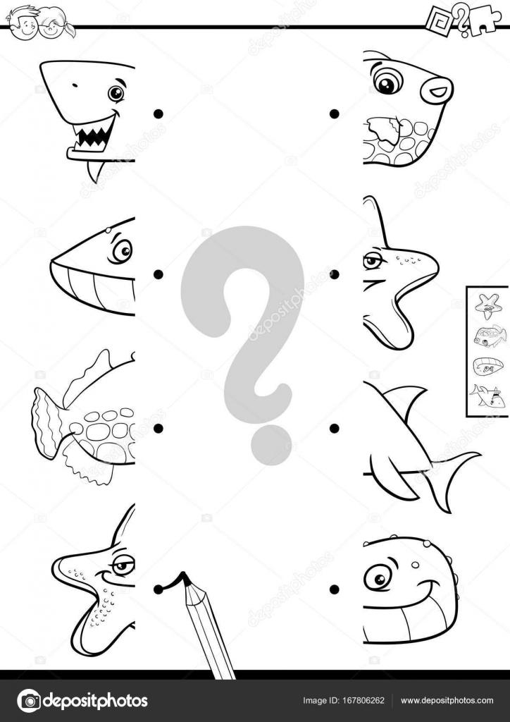 Coincidir Con Mitades De Animales Para Colorear Libro