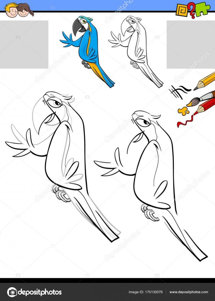 dibujar y colorear la actividad con el pájaro guacamayo — Archivo ...