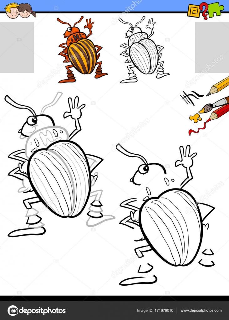 Zeichnung und Färbung Aktivität mit Kartoffelkäfer — Stockvektor ...