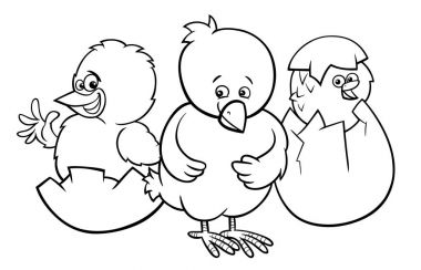 little chickens hatching from eggs color book