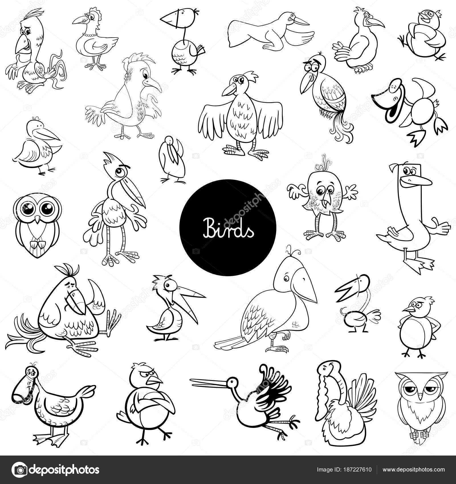 black and white cartoon illustration of birds animal characters big collection coloring book vector by izakowski - Coloring Book Animals