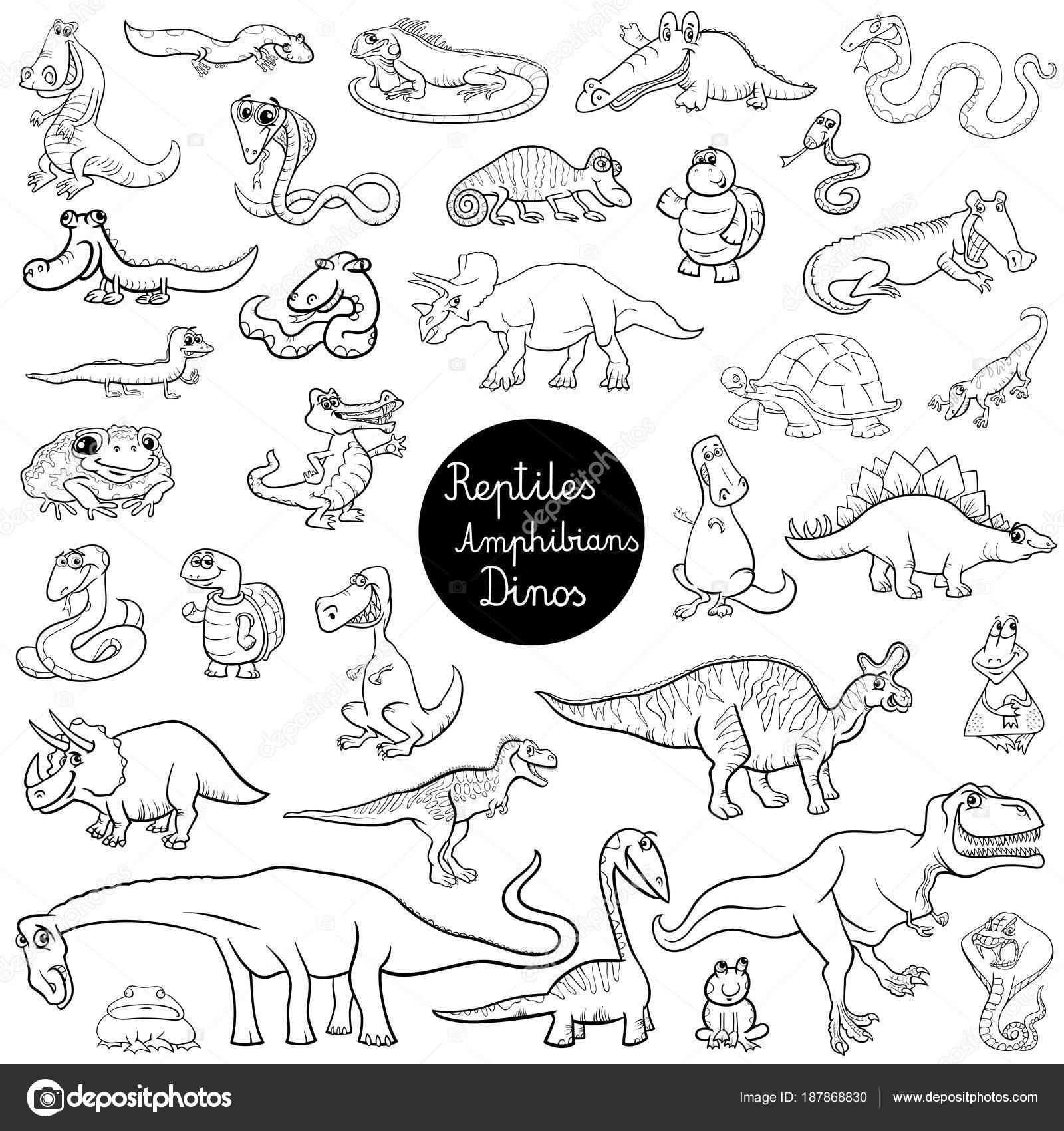 reptiles y anfibios set libro a color — Archivo Imágenes Vectoriales ...