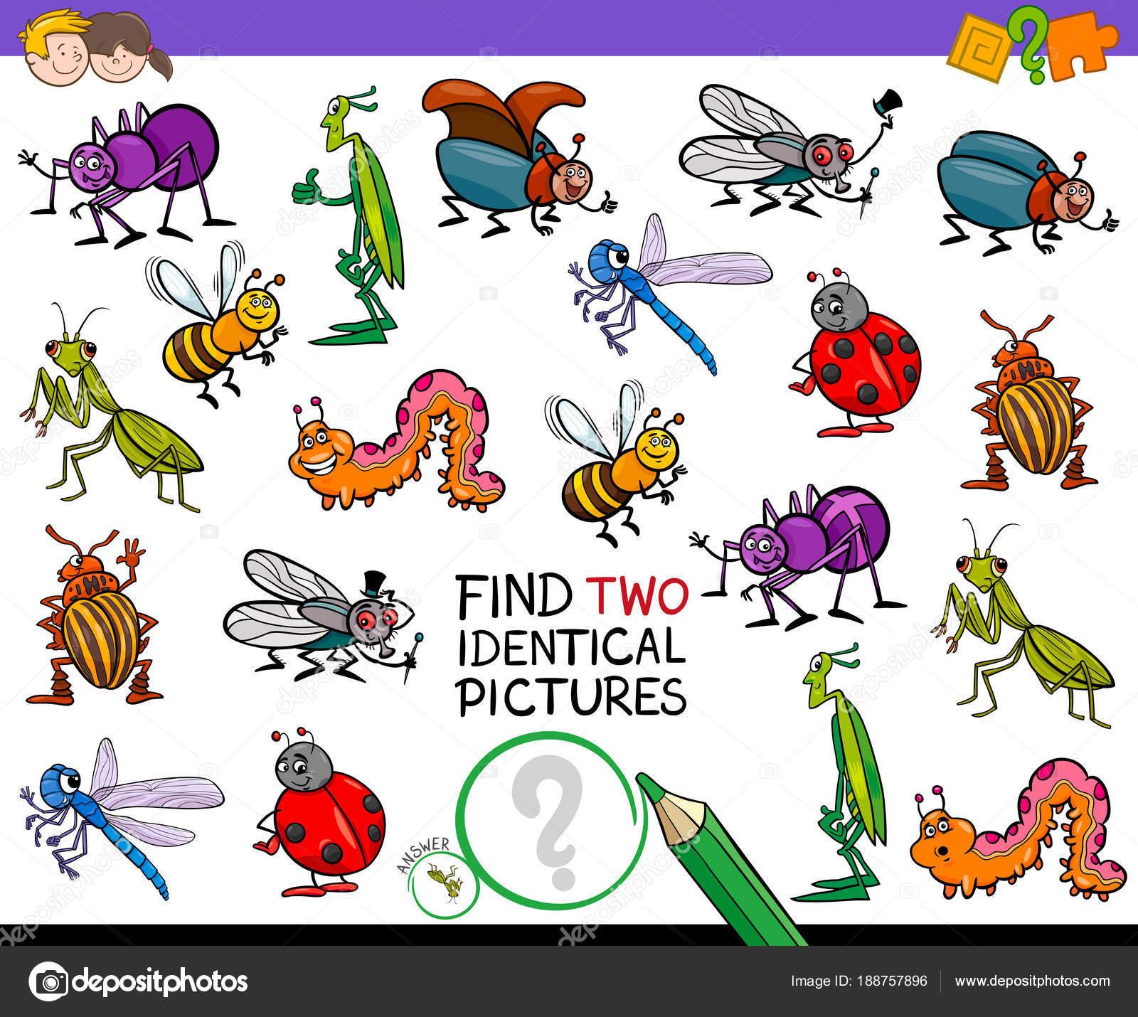 Encontrar dos insectos id nticos dibujos animados juegos para ni os archivo im genes - Fotos de insectos para imprimir ...