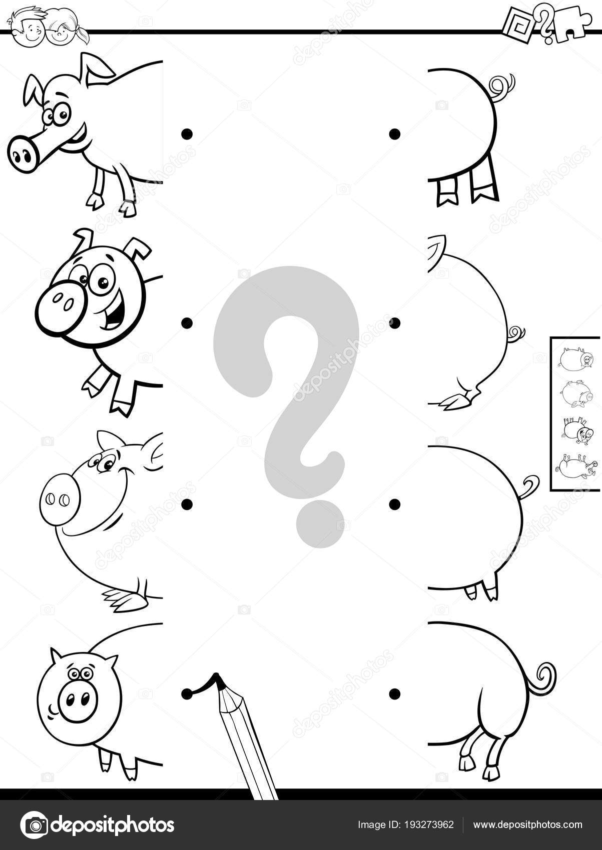 Coincide Con La Mitad Del Libro De Cerdos Para Colorear