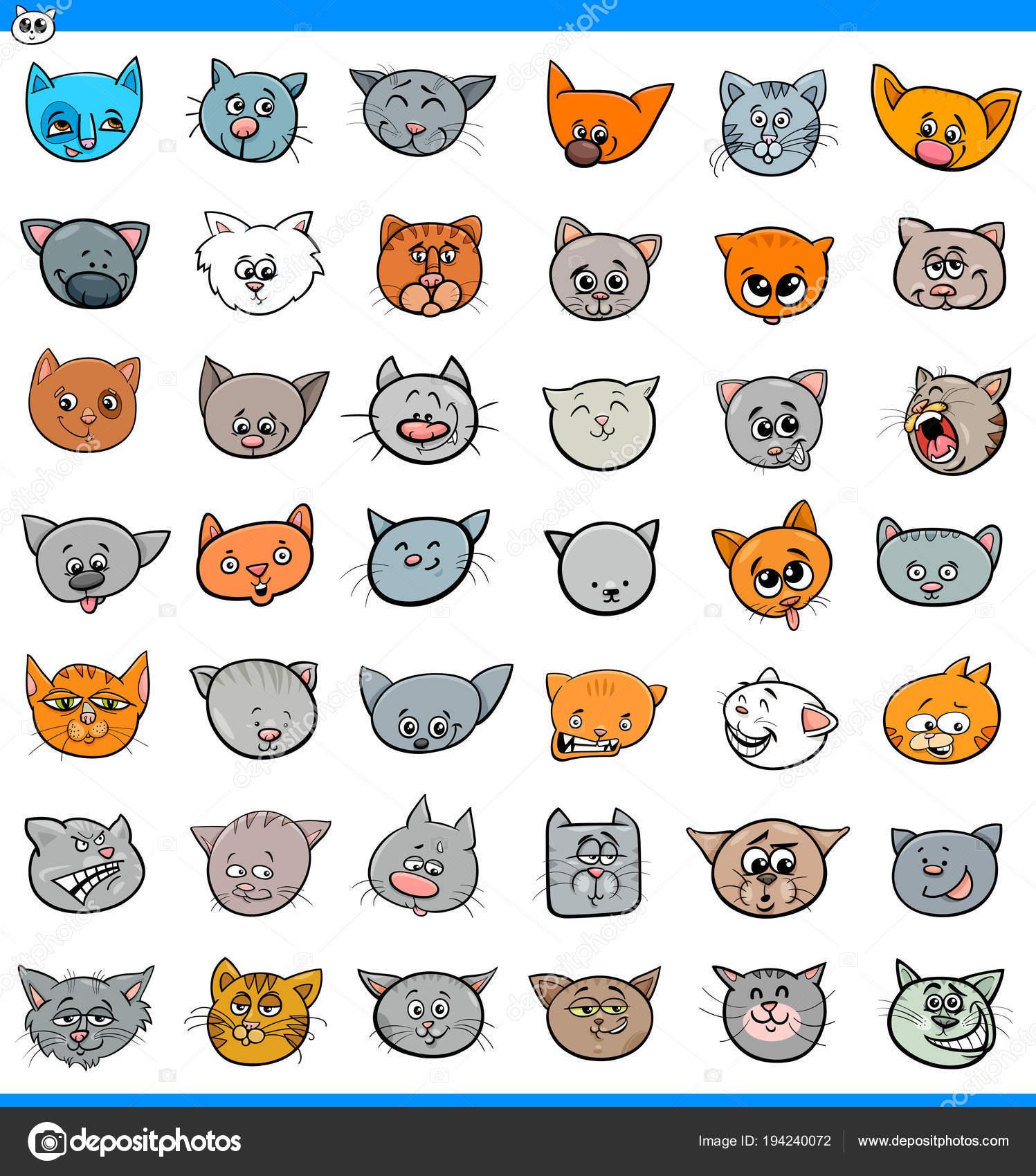 Velká kočička kolekce