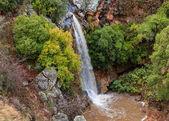 Fotografie Waterfall Saar in the north of Israel in January