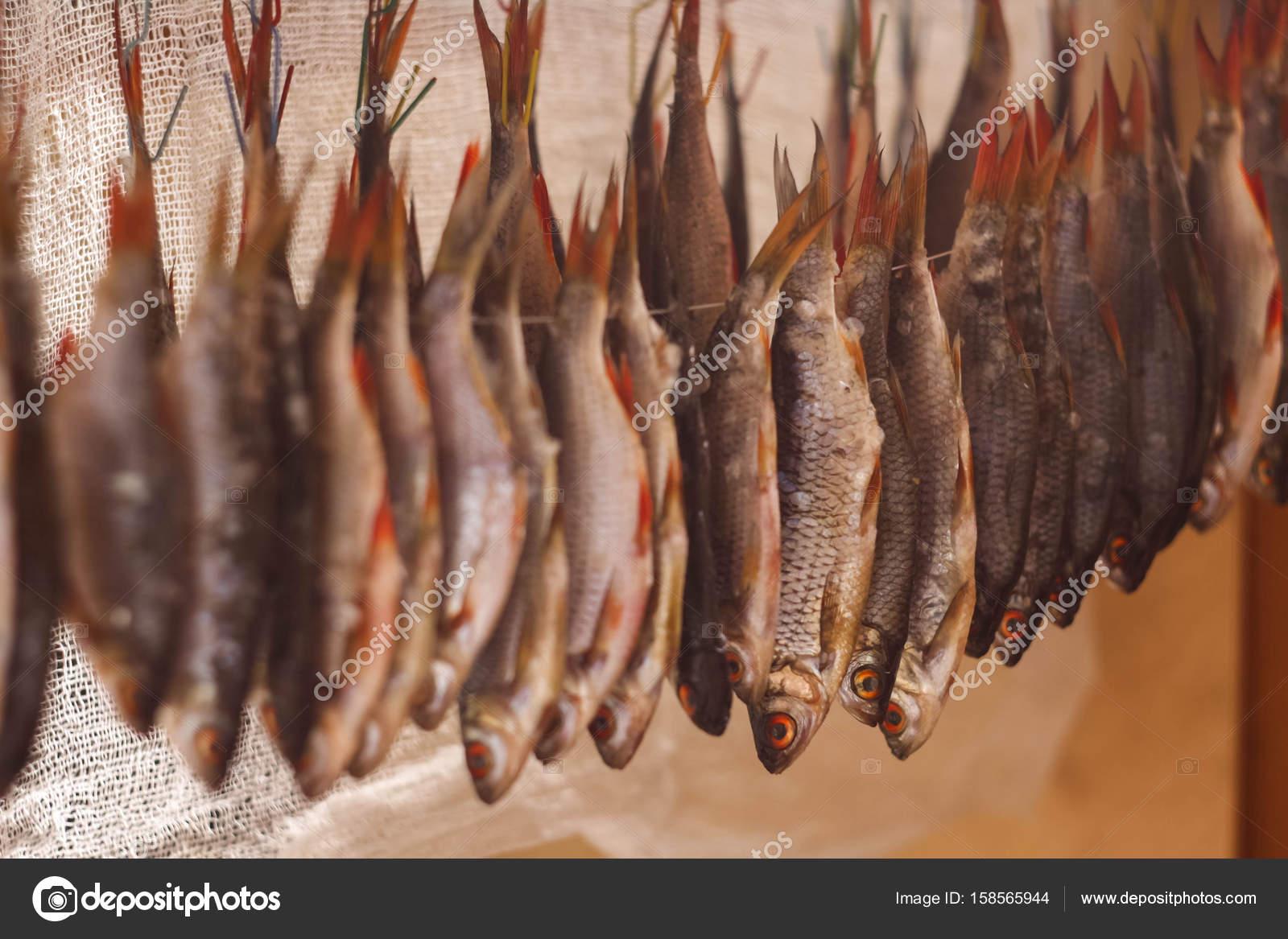 Balık Nasıl Kurutulur