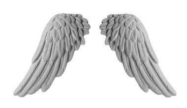 White plaster wings