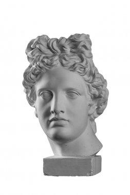 Gypsum statue of Apollo's head