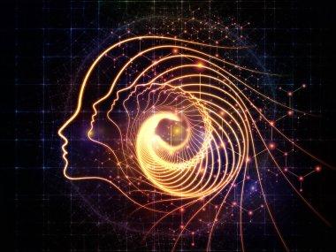 Consciousness Trails