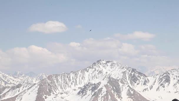Orel létá mezi horami