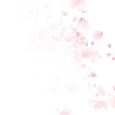 Cherry tree falling petal. EPS 10