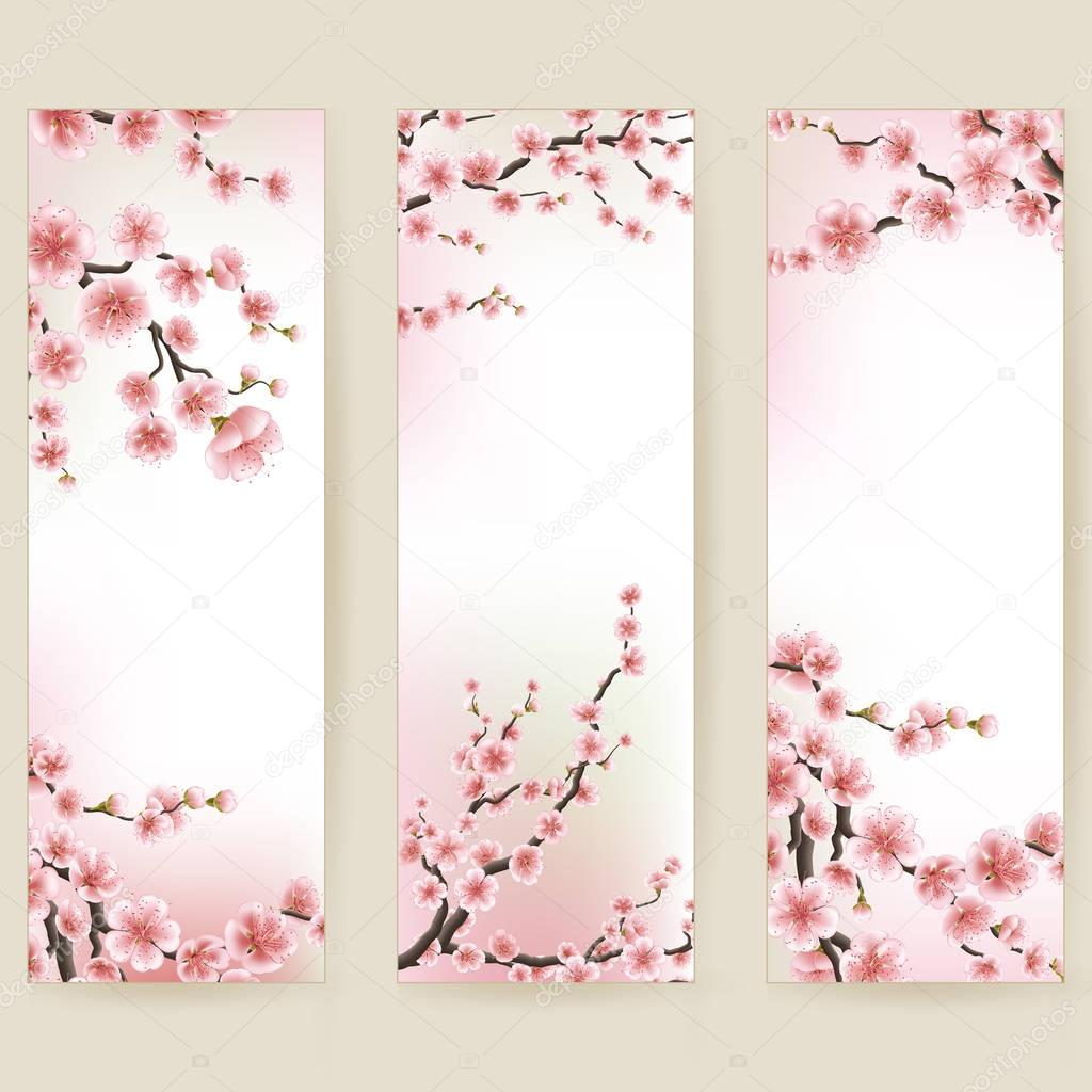 Cherry blossom realistic banner. EPS 10