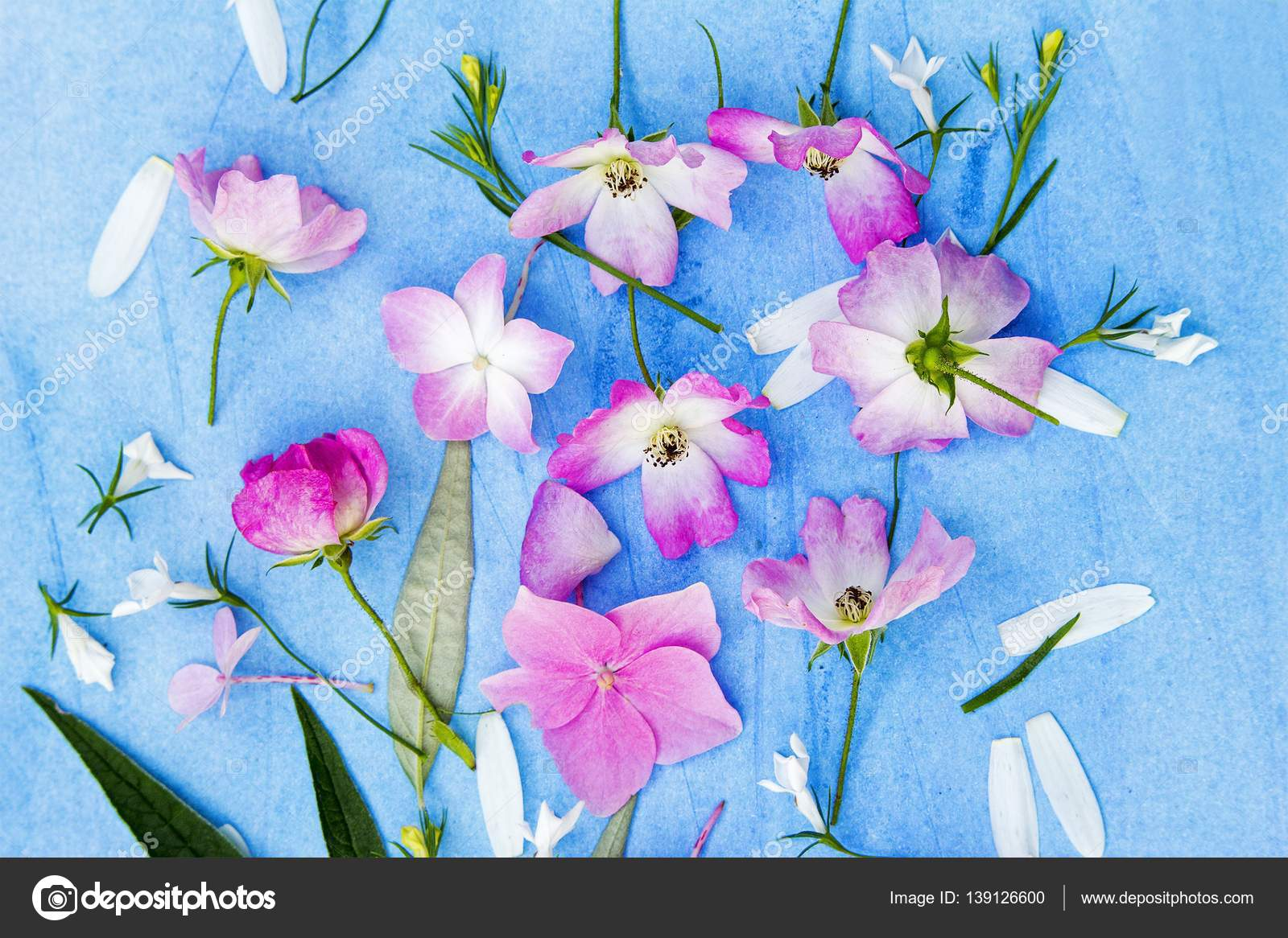 Beautiful Floral Background With Pink Roses And Hortensia Flowers On